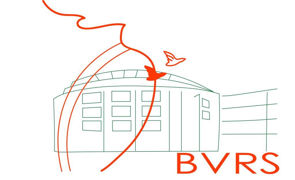BVRS2 def